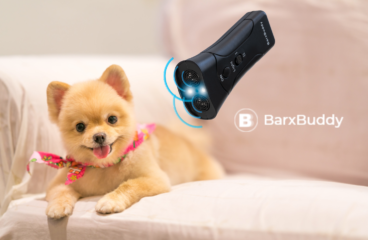 Why BarxBuddy Is The Top Ranked Dog Training Device
