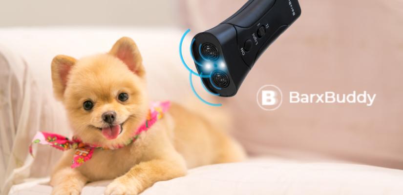 Dog trained using the barxbuddy dog training device.